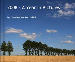 2008 - A Year In Pictures