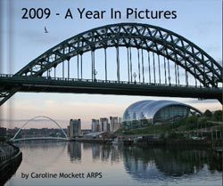 2009 - A Year In Pictures