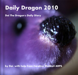 Dai The Dragon's Daily Diary