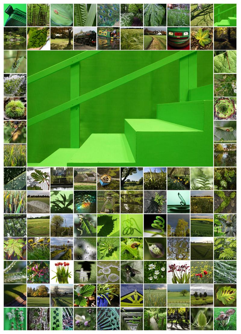 100 Days Green